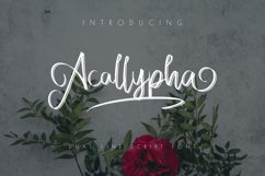 Acallypha Handwritten Font Product Image 1