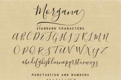 Morgana Script Font Product Image 6