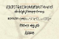 Web Font Duetrich - Handwritten Font Product Image 5