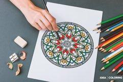 530 Vector Mandala Ornaments Bundle Product Image 17