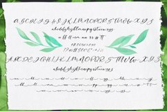 Blakeley Script Font & Watercolor Logos Product Image 8