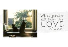 Black Kitten - A Handwritten Font Product Image 2