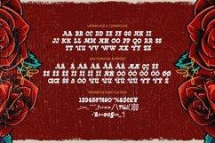 Web Font Ache Font Product Image 4