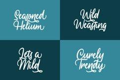 Ressogenia - Cursive Script Font Product Image 4