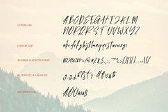 Cartel   Script Handwritten Font Product Image 3
