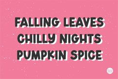 AUTUMN DISPLAY Bold Font Product Image 2