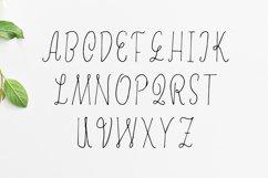 Erica Script Font Product Image 2