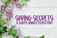 Web Font Spring Secrets - A Quirky Hand-Lettered Font Product Image 1