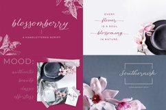 The Chic Calligraphy Font Bundle Product Image 2