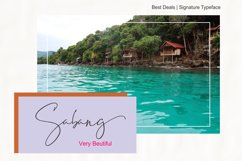 Best Deals | Signature Typeface Product Image 6