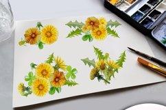 Summer Dandelion Clipart Watercolor  Product Image 4