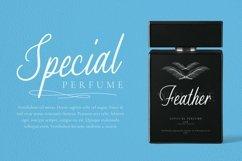 Web Font Eveline Stars Product Image 2