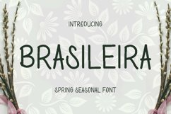 Brasileira Font Product Image 1