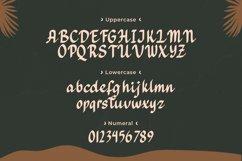 Hadeya - Modern Script Typeface Product Image 5
