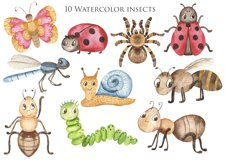 Insects Watercolor Clipart. Cards and seamless patterns Product Image 6