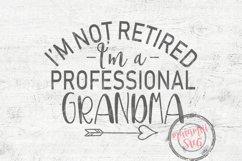 Grandma SVG, Grandmother Svg, Funny Grandma SVG, Funny Svg Product Image 2