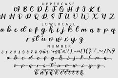 Adelia - A Modern Script Font Product Image 2
