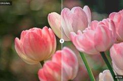 50 Spring Lightroom Presets Product Image 2