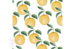 Watercolor citrus clipart Orange digital paper Product Image 1