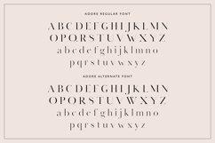 Adore Modern Serif Font Product Image 5