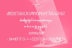 Adoredly Script Brush Font Product Image 2