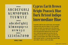 Boheld Font Collection Product Image 10