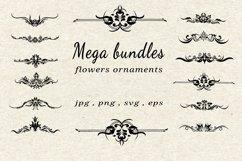 bundles vector flowers ornaments Product Image 1