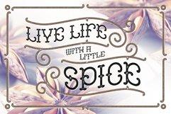 Anise Seeds typeface Product Image 2