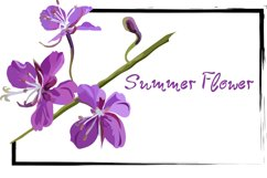 Blooming sally font Product Image 5