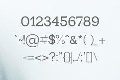 Paulose Modern Serif Font Family Product Image 3