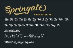 Springate - Modern Script Font Product Image 5