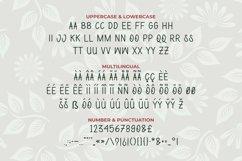 Brasileira Font Product Image 4