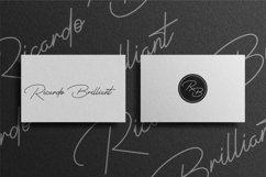 Signatrust / 2 font signature Product Image 3