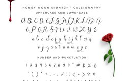 Honey Moon Midnight Two Fonts Product Image 3