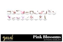 20 PINK BLOSSOMS Photoshop Overlays Product Image 3