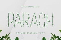 Parach Font Product Image 1