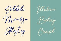 Monnolitic Casual Signature Font Product Image 7