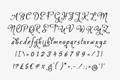 Gaby Font Product Image 2