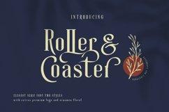Roller Coaster Elegant Serif Extra Product Image 3