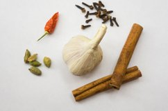 Watercolor spices vector set-1 Product Image 4