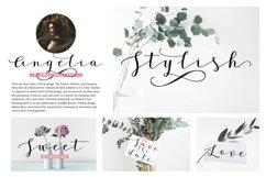 Janges script Product Image 5