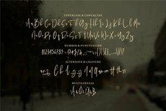 Web Font Panala - A Bold Signature Font Product Image 6
