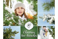 50 Christmas Tree Branch Overlays Product Image 1