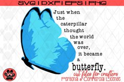 Butterfly Saying - Just When the Caterpillar | SVG Cut File Product Image 5