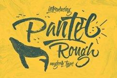 Pantel Rough Product Image 1
