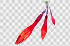 Orange-red Fuchsia watercolor png Product Image 5