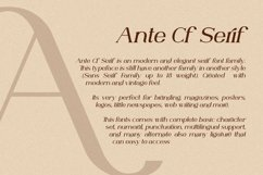 Ante Cf Serif Product Image 2