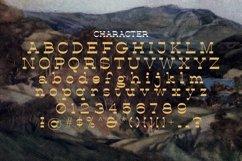 Web Font Agaria Product Image 2