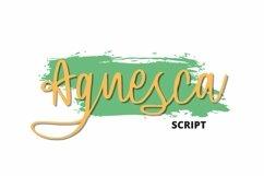 Web Font Agnesca Font Product Image 1