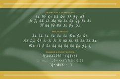 Web Font Aliya Font Product Image 4